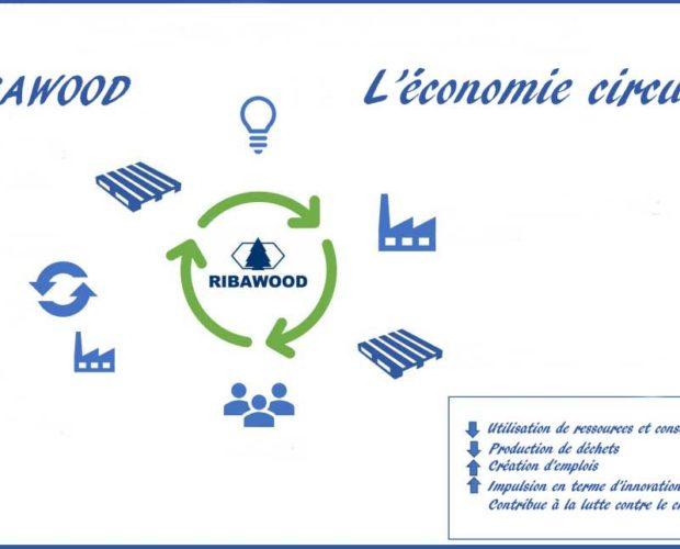 L'économie-circulaire-Ribawood-1